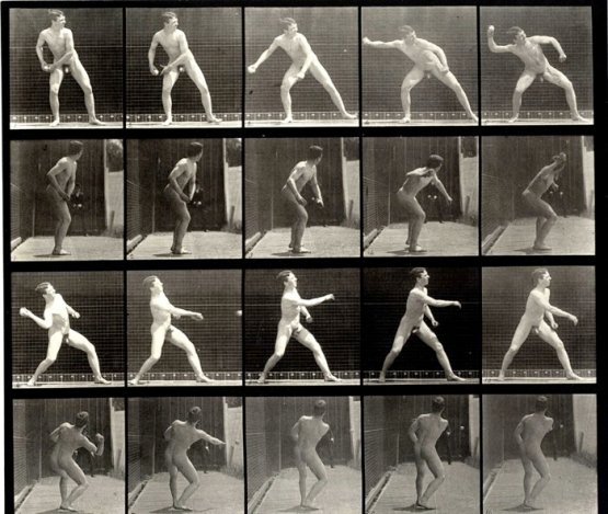 Muybridge, Plate 273, baseball pitching