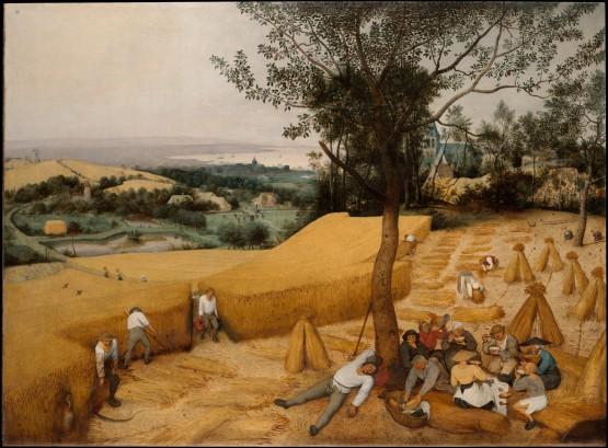 Bruegel, Corn Harvest